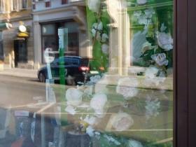 Spiegelung im Schaufensterglas