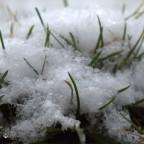 """Schnee""""Flocken"""""""