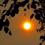 Sommersonne auf Tauchstation !