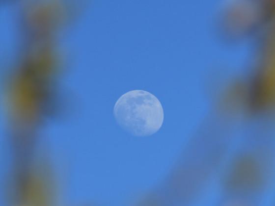 Der Mond mit grünem Rahmen ;-)