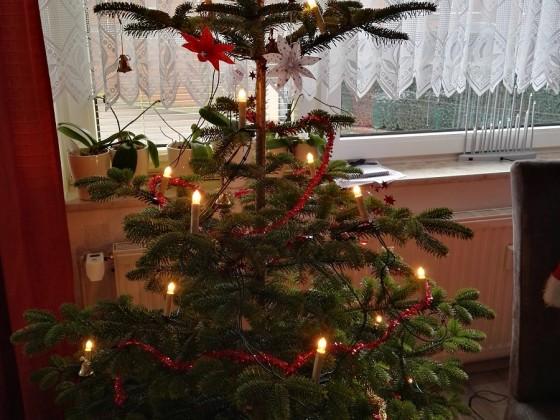fast ausrangierter Weihnachtsbaum