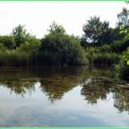 Wasser .....ein natürlicher Spiegel
