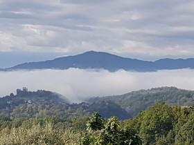 Der Herbst bringt Nebel mit