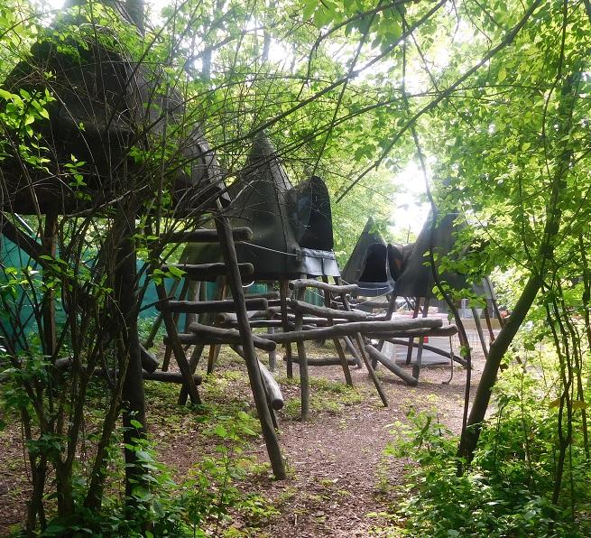 Baumhäuser unter Bäumen