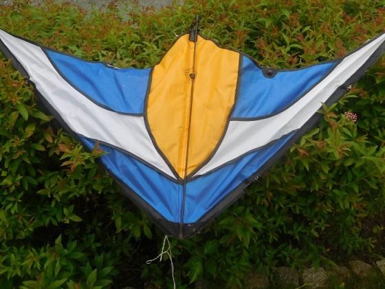 Lenkdrachen - wartend auf Wind