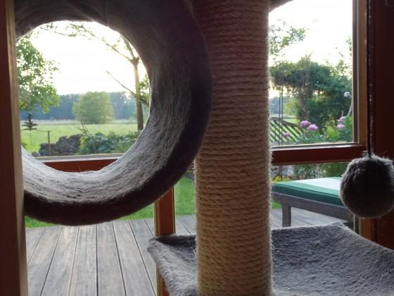 Kratzbaum mit Aussicht
